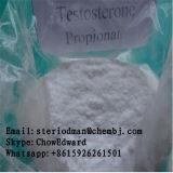 근육 얻기를 위한 처리되지 않는 스테로이드 호르몬 주사 가능한 테스토스테론 Propionate