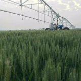 Sprenger-Gewehr-Bewässerungssystem für Landwirtschafts-Verbrauch