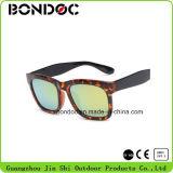 Bons óculos de sol elegantes do projeto Tr90