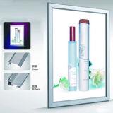 Bâti en aluminium DEL Lightbox mince d'étalage de cadre léger