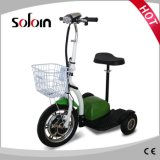 都市移動性のバランス3の車輪のFoldable電気手段(SZE500S-11)