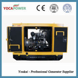40kw /50kVA leiser elektrischer Generator-Dieselgenerator-Set