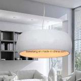 Fabrik-Zubehör-moderner Innenleuchter-hängende Beleuchtung für Dekoration