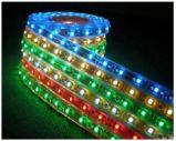 SMD5050 LED 지구 빛 밧줄 빛