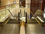Escada rolante elétrica para interno
