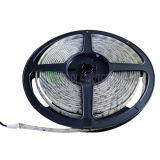 Lumière de bande de la Chaud-Vente SMD3528 DEL 60LEDs/M pour l'éclairage décoratif
