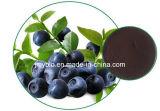 酸化防止剤のブルーベリーのエキス、10:1、5%、10%、20%の30%のアントシアニジン