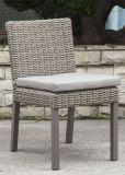 Modern Rattan / cadeira de vime para mobiliário de exterior (LN-2000)