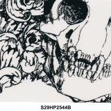 Modelo No. S27yd1529b del cráneo de la película de la impresión de la transferencia del agua del superventas