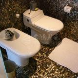 Bisazza Shell-Mosaik-Perlmuttbaumaterial für Wand