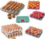 Bandeja semi automática del huevo que hace la máquina (ETS1200B)