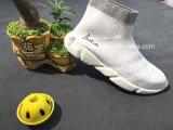 Высокой обувь тавра отрезока связанная мухой