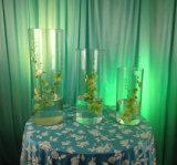 Vase acrylique rond clair à cylindre