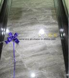 Mattonelle di pavimentazione piene del marmo del corpo del materiale da costruzione