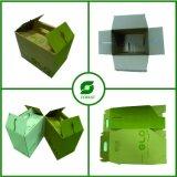 Caja de cartón de encargo del diseño del color con la maneta
