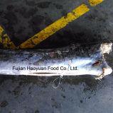 Wasserfische gefrorener Meerestier-Speerfisch