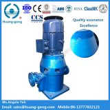Pompe à eau auto-amorçante verticale marine de la BV d'ABS de CCS