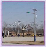 Lumières 7m solaires esthétiques de route avec le morceau de Bridgelux Etats-Unis 30W LED