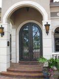 Projetos principais da porta de única entrada do ferro feito da segurança