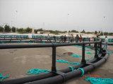 Truite de flottement ronde d'Offershore de HDPE cultivant le camp