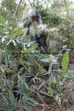 Vestito durevole respirabile di Camo Ghillie del terreno boscoso 2016 per caccia