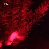 [هووزهو] يشعل الغوص [ف13] أحمر [لد] 2600 [لم] [أوندروتر] يصوّب مصباح