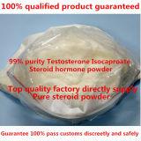Тестостерон Isocaproate порошка роста мышцы очищенности 99% стероидный