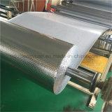 Embalaje de aluminio y envío del encadenamiento frío de la hoja de la burbuja