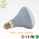 Spur-Beleuchtung-Flut-Licht des Reflektor-Br30/PAR40 der Birnen-LED