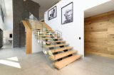 Escalera de cristal de madera del pasamano de la barandilla moderna del acero inoxidable