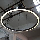 LED 지구를 가진 천장 빛의 둘레에 래커를 칠하는 흑연 회색