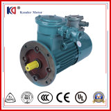 Frequenz-Konvertierung Wechselstrom-Elektromotor für Entlüfter-Ventilator