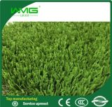 美しいおよびApplicable屋上庭園Grass Waterless Grass