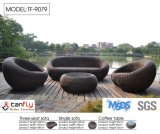 Spitzenpatio-Möbel Allwetter- PET Rattan-Sofa-Set