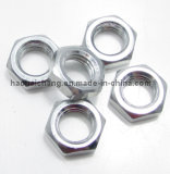 Soem Highquality Zinc Plated Nut für Household Appliances