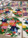 De volledige Machine van de Druk van de Overdracht van de Hitte van de Kleur voor Textiel/Kledingstuk