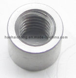 OEM Highquality Zinc Plated Nut para Household Appliances
