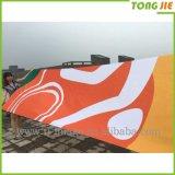 Bandiera di pubblicità d'attaccatura esterna della visualizzazione della via