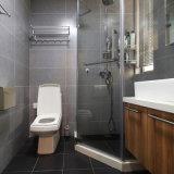 Cremalheira de toalha sanitária para cima de giro dos mercadorias do banheiro do aço inoxidável (M05)