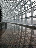 Murs rideaux en verre structuraux de modèle moderne