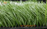 [لوور بريس] عشب اصطناعيّة لأنّ [فووتبلّ فيلد]