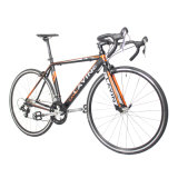 Preiswertes Super-Lightweight Straßen-Fahrrad der Aluminiumlegierung-700c des Rahmen-16-Speed
