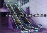 CER Bescheinigungs-Rolltreppe mit 35 Grad