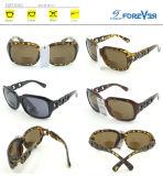 Óculos de sol novos da boa qualidade do projeto Fqp16383 com lente bifocal