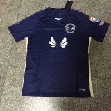 Jersey bleus du 2016/2017 de saison football de l'Amérique, T-shirts du football