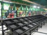 Reihen Gemüse des Metall3 und Frucht-Bildschirmanzeige-Zahnstange