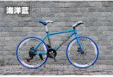 Bicicleta fixa da engrenagem da estrada da alta qualidade (ly-a-54)
