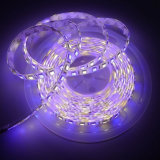 5m 5050 SMD RGBW RGB& refroidissent les lumières de Noël flexibles chaudes de bande du blanc 300 DEL