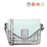 Neuer Entwerfer 2016 über Karosserien-Leder-Handtasche (KITSS-15-10)