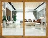 De recentste Schuifdeuren van de Keuken van het Aluminium van het Ontwerp van de Deur Binnenlandse